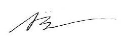 Susan Henking signature